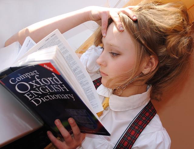 辞書を確認しよう