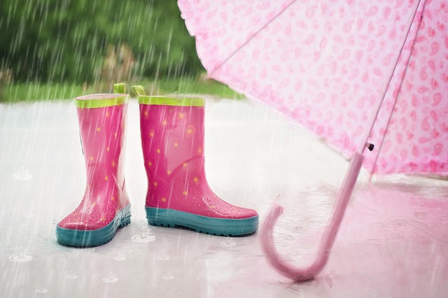 雨の日の楽しみ方